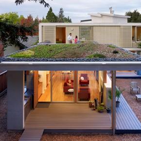 10. Ogród skalny na dachu (2092 odwiedzin)