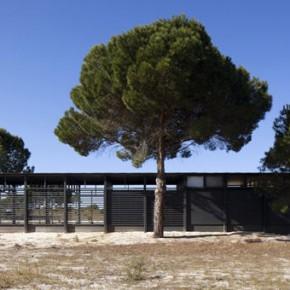 Dom letni - Paratelier architects