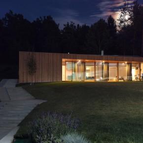 MJ House / Kombinat Arhitekti / – dom pod lasem