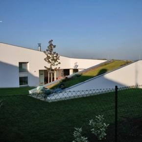 dom ślimak1