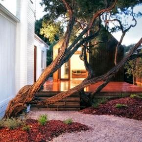 Barwon House / Auhaus Architecture