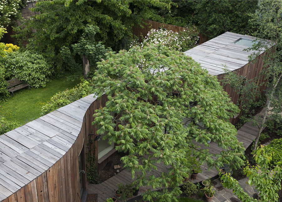 DOM I DRZEWO ;) – Tree house / 6a Architects