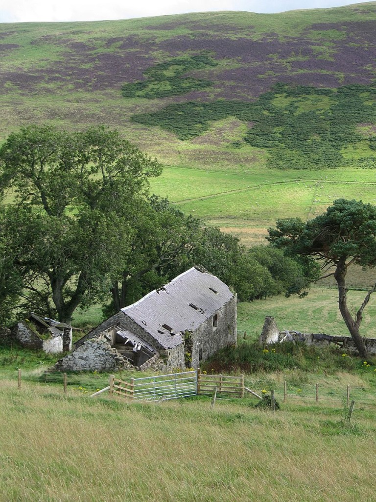 Natural-landscape-around-the-Mill-Home-overlooking-the-Scottish-border